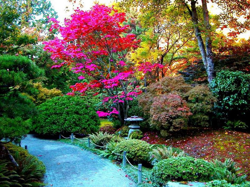 Paraisos naturales taringa for Paisajes de jardines