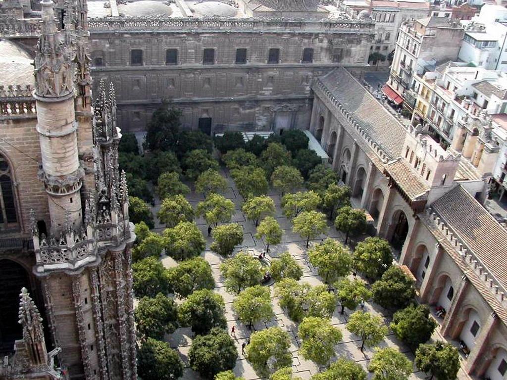Patio de los naranjos de la catedral de sevilla - Orange en sevilla ...